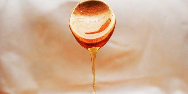 Ist Honig gesund und warum? Hier erfährst du es!