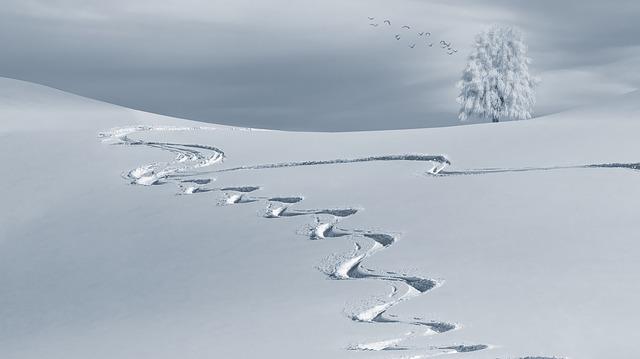Im Winter leiden viele Menschen unter einer zu trockenen Haut.