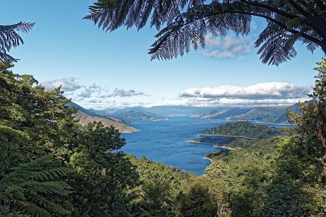 Neuseeland ist die Heimat des Manuka Honig.